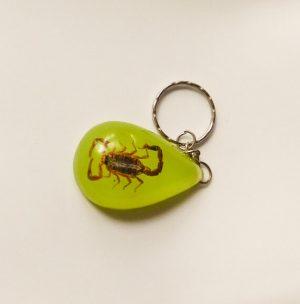 Skorpió kulcstartó
